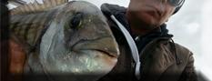ABC della pesca a Bolentino